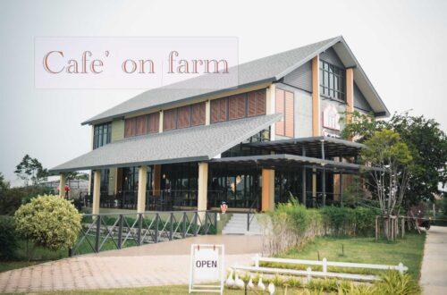 Cafe' on farm
